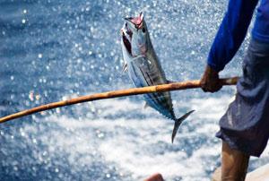 Рыбалка в Гомельской области